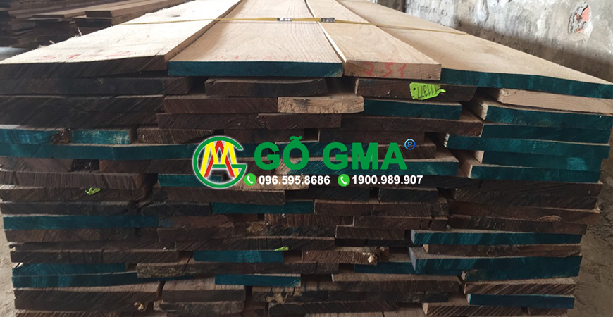 go soi do gma-GMA Việt Nam