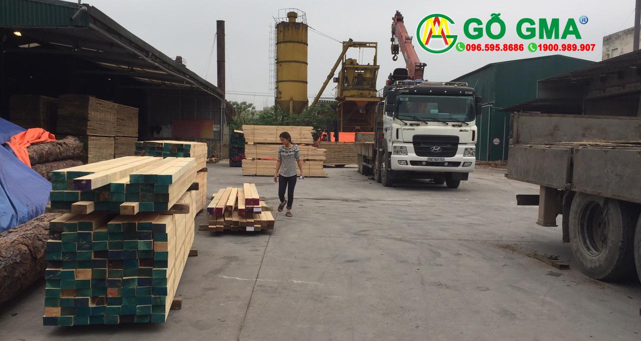 gotuhiengma3 1-GMA Việt Nam