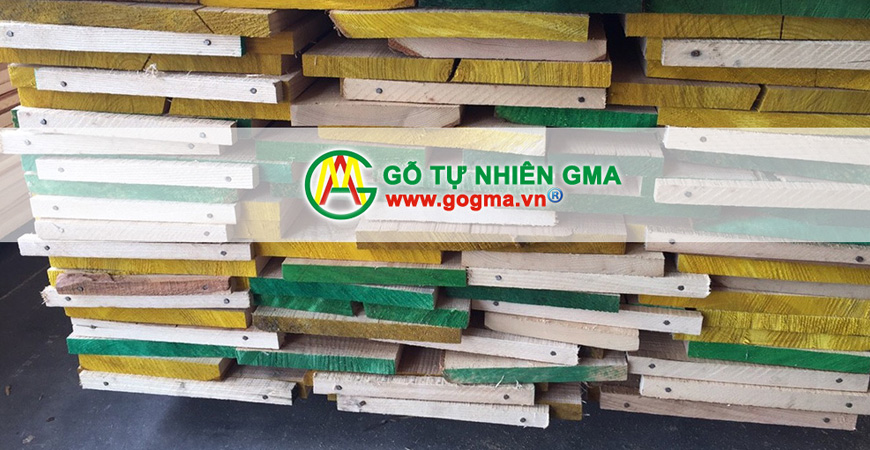 gotanbixequycach 5-GMA Việt Nam