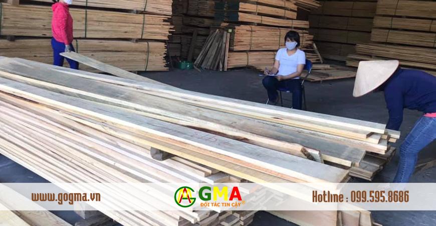 go thong viet gma-GMA Việt Nam